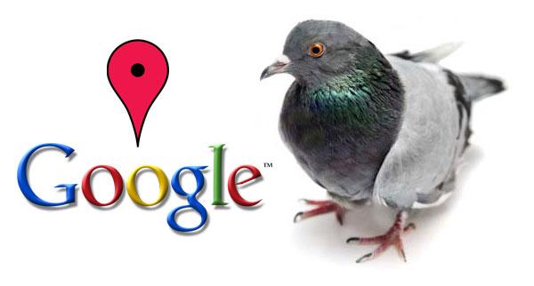Гугл Голубь